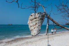 Hanging stone on the beach Stock Photos