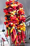 Hanging string of mixed colorful chili peppers for sale at Sineu market, Majorca. Spain Royalty Free Stock Photography