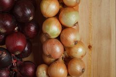 Hanging strings of red and white onions Stock Photos