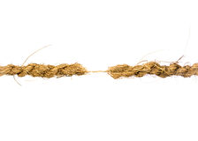 Hanging by a Thread Royalty Free Stock Images