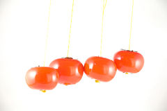 Hanging tomatos Stock Photo