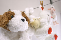 Hanging toys. Toys hanging on the string (after washing Royalty Free Stock Photography