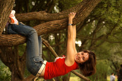 Hanging on tree. Brown-haired young woman hanging on willow branch Stock Photos