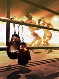 Hanging up boxing gloves. A pair of white and red boxing gloves hung up on the perimeter lines of a boxing ring Stock Photography