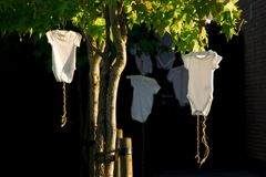Hanging white baby bodysuit in tree, against dark background stock photo
