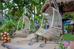 Hanging wicker chairs Stock Photos