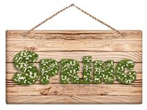 Hanging wodden chalkboard with Spring text on white background. Hanging wooden chalkboard with rustic style and  text Spring with green grass and white flowers Royalty Free Stock Images