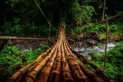 Hanging wooden bridge royalty free stock photography