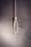 Hangman noose. A Hangman noose with loops Royalty Free Stock Photos