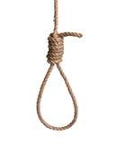 Hangman's knot Royalty Free Stock Photos