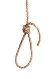 Hangman's knot. Isolated on white Stock Photo