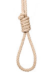 Hangman's noose. Bankrupt concept, rope noose with hangman's knot before hanging Stock Photos