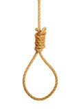 Hangmans Noose. Isolated on a white background Stock Image