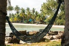 Hangmat aan palmen wordt gebonden die Stock Foto