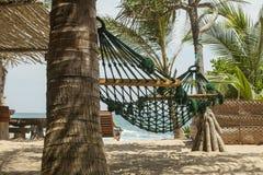 Hangmat in de schaduwen van palmen op het strand van een toevlucht Stock Afbeeldingen