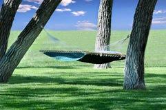 Hangmat die tussen bomen wordt gehangen stock afbeeldingen