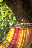 Hangmat en boom royalty-vrije stock fotografie