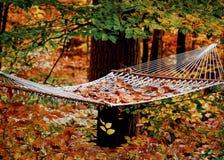 Hangmat in het hout Royalty-vrije Stock Afbeelding
