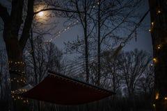 Hangmat onder de maan Stock Foto