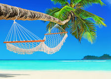 Hangmat op perfect Palm Beach Baie Lazare, Mahe-eiland, Seychell Stock Afbeeldingen