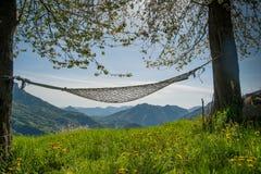 Hangmat tussen bomen Stock Foto's