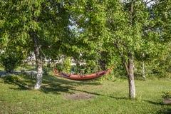 Hangmat tussen boom twee in een Tuin royalty-vrije stock foto's