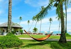 Hangmat tussen palmen op tropisch strand Royalty-vrije Stock Afbeeldingen
