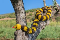Hangt de vervalsing gebreide slang in boomboomstam stock fotografie