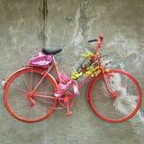 Hangup da bicicleta do vintage Imagem da cor Imagens de Stock Royalty Free