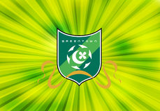 Hangzhou Greentown Football Club Stock Images