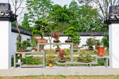 Hangzhou potted landscape in the park Royalty Free Stock Photos