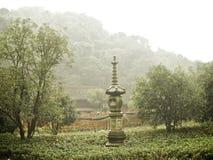 Hangzhou-Teeterrassen stockbilder