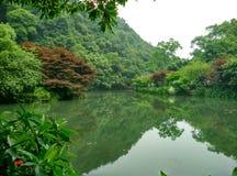 Hangzhou van China negen stromen, het longjing Stock Afbeeldingen