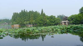 Hangzhou west lake,Lotus Stirred by Breeze in Quyuan Garden Royalty Free Stock Image
