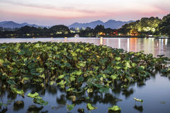 Hangzhou west lake at night royalty free stock images