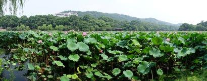Hangzhou west lake stock images