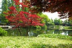 Hangzhou zachodnia jeziorna sceneria fotografia royalty free