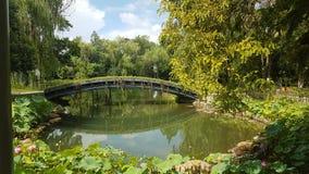 Hangzhous naturliga under för siden- museum arkivbild