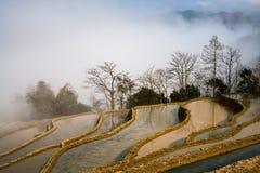 Hani Rice Terraces Fotografía de archivo