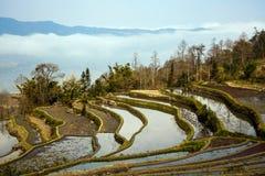 Hani Rice Terraces Fotografía de archivo libre de regalías