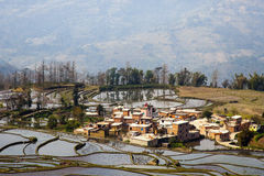 Hani Rice Terraces immagini stock