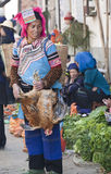 Hani Woman holding Chicken. A Hani woman holds her recently purchased chicken at a market in Yuanyang in southern Yunnan province in China Stock Image
