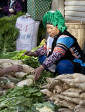 Hani Woman selling Vegetables. A Hani woman dressed in her traditional hand embroidered and colorful clothing sells vegetables along the side of a street during Royalty Free Stock Photos