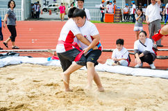 Hanmaeum国际体育节日2013年 免版税库存照片