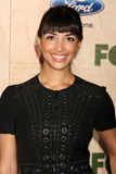 Hannah Simone Royalty Free Stock Images