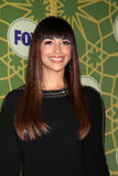 Hannah Simone Royalty Free Stock Photography