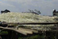 Hanoï, Vietnam : des vermicellis de marante arundinacée les nouilles vietnamiennes spéciales sont séchés sur les barrières en bam photo libre de droits
