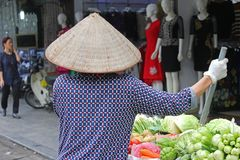 Hanoi damgatuförsäljare som carting grönsaker som säljer Royaltyfria Bilder