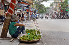 Hanoi fruit seller. A fruit seller sits against a tree on the side of a quiet road in central Hano,Vietnam Stock Image