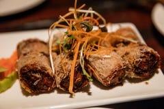 Hanoi gefrituurde de Lentebroodjes royalty-vrije stock afbeelding